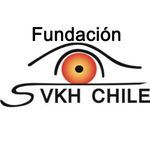 SVKH CHILE
